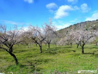 Alpujarra Granadina-Viaje Semana Santa;tejera negra guadalajara las tetas de viana parques naturales